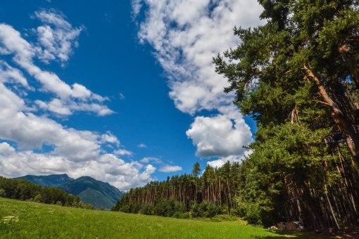 Südtirol_2014_3-126