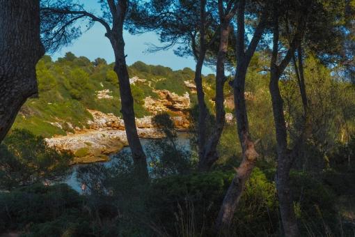 Mallorca_2014-038-a
